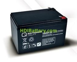 Batería para UPS-SAI 12v 13Ah Plomo Agm Q-Batteries 12LCP-12