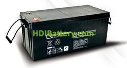 Batería solar agm 12v 243Ah 12LC-225 Q-Batteries