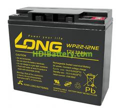 Batería de AGM 12 Voltios 22 Amperios Long WP22-12NE