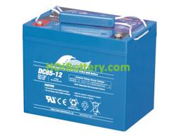 Batería de Ciclo Profundo Fullriver DC85-12 12V 85Ah 260x169x215 mm