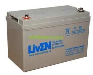 Bateria de Gel 12 Voltios 100 Amperios LVJ100-12 Liven Battery