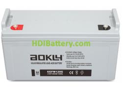 Batería de GEL 12 Voltios 120 Amperios AOKLY POWER 6GFM120G (409X177X207 mm (hasta el terminal 234 mm))