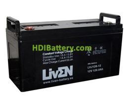 Bateria de Gel 12 Voltios 120 Amperios LVJ120-12 Liven Battery