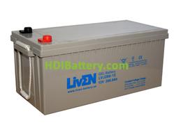 Bateria de Gel 12 Voltios 200 Amperios LVJ200-12 Liven Battery
