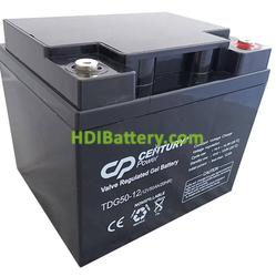 Batería de GEL 12 Voltios 50 Amperios TDG50-12 Century Power (198X166X174 mm)