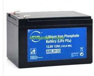 Batería de LiFePO4 12 Voltios 12 Amperios NX
