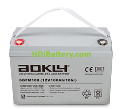 Batería de plomo AGM 12 Voltios 100 Amperios Aokly Power 6GFM100 ( 331 X 173 X 213 mm )