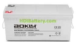 Batería de plomo AGM 12 Voltios 200 Amperios 6GFM200 Aokly Power ( 522 x 240 x 218 mm )