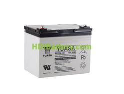 Batería de plomo AGM 12 Voltios 36 Amperios 196x130x169 mm Yuasa REC36-12I