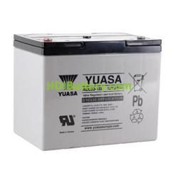 Batería de plomo AGM 12 Voltios 80 Amperios 259x168x213 mm Yuasa REC80-12I