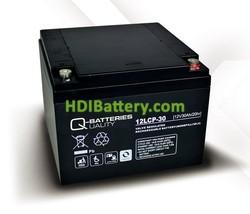 Batería de plomo AGM cíclica 12v 30Ah 12LCP-30 Q-Batteries