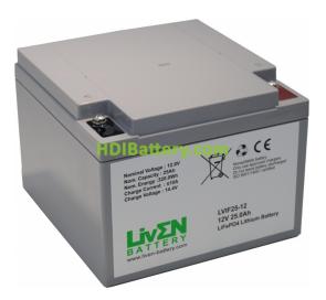 Batería LiFePO4 12.8 Voltios 25 Amperios Liven Battery 175x165x125 mm