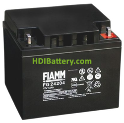 Batería para buggie de golf 12V 42Ah Fiamm FG24204