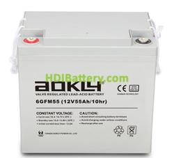 Batería para fregadora 12V 55Ah GEL Aokly Power 6GFM55G