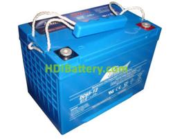 Batería para fregadora 12V 65Ah Fullriver DC65-12B