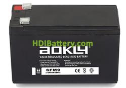 Batería para luces de emergencia 12V 9Ah Aokly Power 6FM9