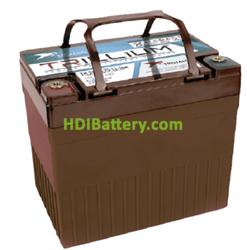 Batería Solar Litio Trojan Trillium TR 25.6-25 Li-ion 25,6 Voltios