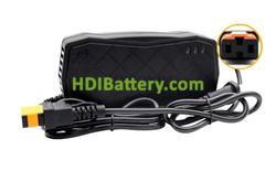 Cargador para baterías plomo 48V 2.9Ah