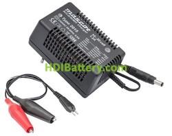 Cargador para Pack baterías de 12V a 24V Ni-Cd/NI-MH