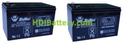 Conjunto 2 baterías AGM 24 Voltios 12 Amperios DiaMec (151 x 99 x 95 mm)