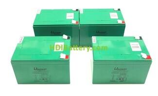 Conjunto 4 baterías Carbono-Gel 48V 18Ah 151x98x104 mm