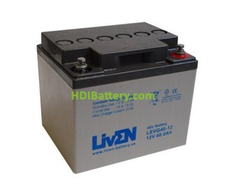 Batería para carro de golf 12v 40ah Gel puro LEVG40-12 Liven