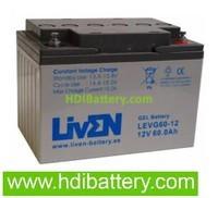 Batería para carro de golf 12v 60ah LEVG60-12 Liven